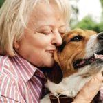 Información sobre la Zoonosis: Enfermedades Zoonóticas
