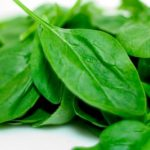 Información sobre la Espinaca: Beneficios y datos nutricionales