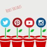 Información sobre redes sociales de contenidos: Algunos ejemplos