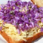 La borraja: una flor comestible