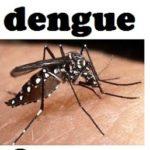 Dengue: ¿Qué es, cuáles son sus síntomas y cómo tratarlo?