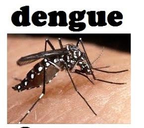 Dengue en Charata.