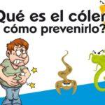 Información del Cólera: Definición y causas