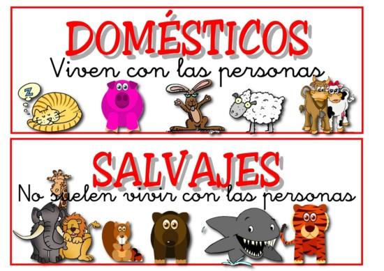 ANIMALES doemsticos y salvajes