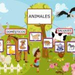 Información de animales domésticos y salvajes: Diferencias con cuadros comparativos