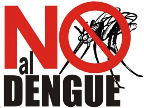 dengue124885-el-combate-contra-el-dengue-y-el-chikunguya-desbordado