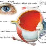 Información de Glaucoma: Síntomas de angulo abierto y cerrado