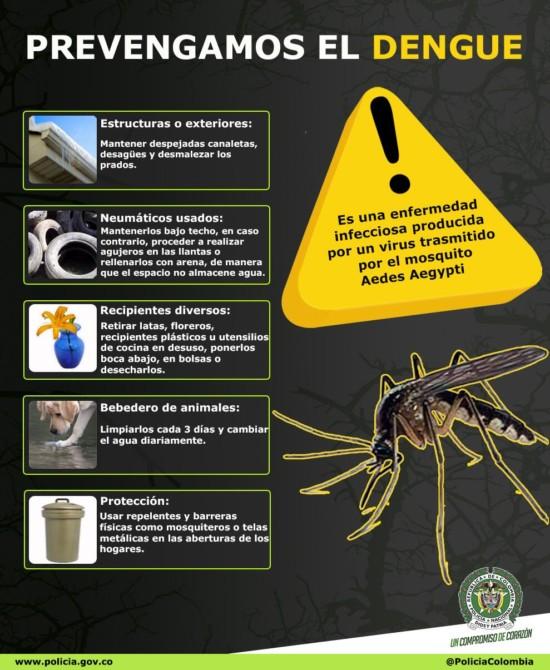 infografia_dengue-2