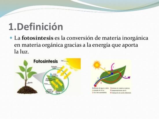 fotosntesis-2-638