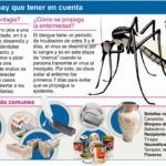 Información sobre el Dengue