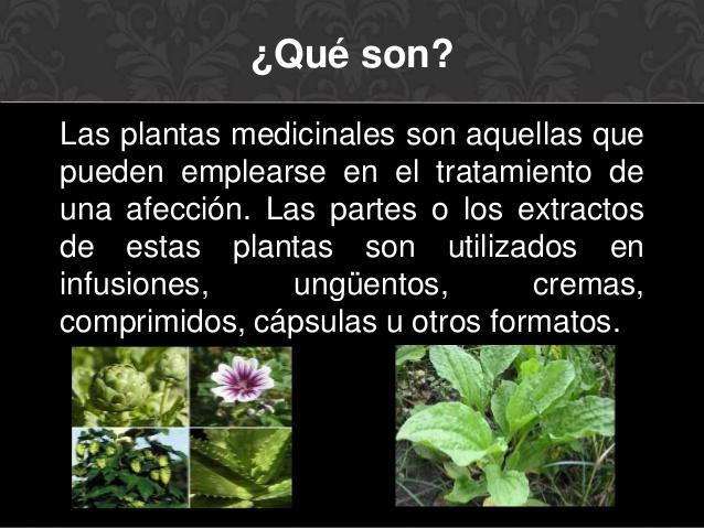 plantas-medicinales-2-638