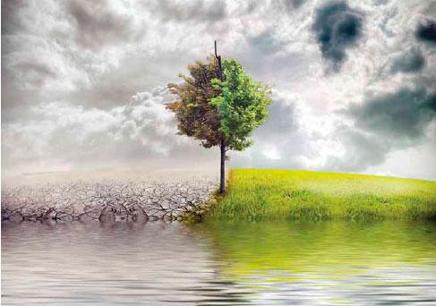 impacto-ambiental-08