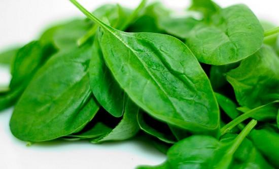 Espinaca-aporta-a-tu-organismo-vitamina-A-C