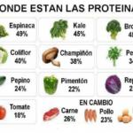 Información sobre la Proteína: ¿Qué es?