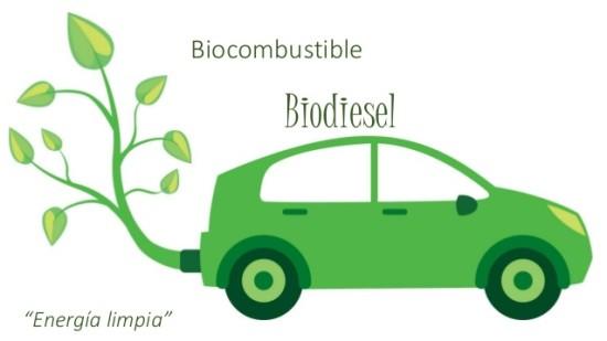 biocombustible-biodisel-1-638