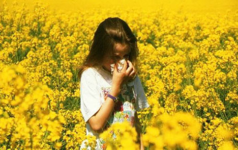 hay_fever