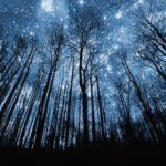 Información sobre las estrellas y sus características