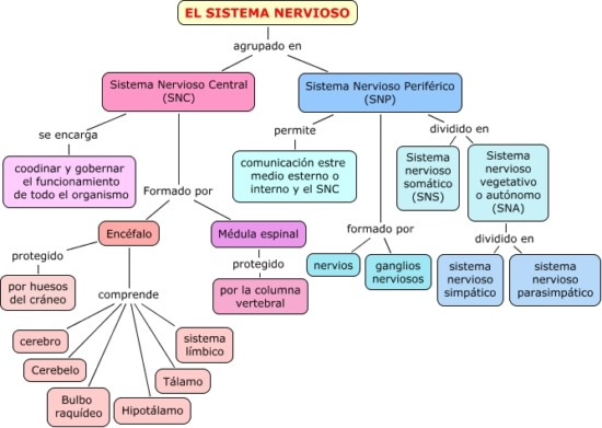 nerviososss.cmap_-1