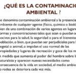 Más información sobre la Contaminación Ambiental
