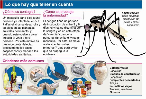 Informaci n sobre el dengue for Todo sobre el marmol
