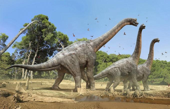 Dinosaurios Hervivoros Nombres Caracteristicas Tipos E Imagenes Informacionde Info Cuando se habla de nombres de dinosaurios marinos, todos pensamos en esta especie de reptil. dinosaurios hervivoros nombres