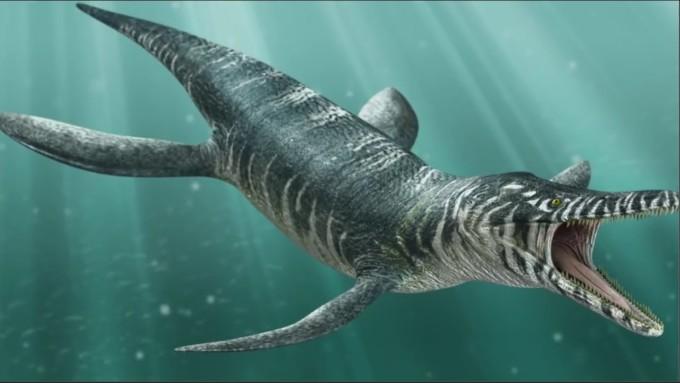 Dinosaurios Acuaticos Y Marinos Nombres Tipos Caracteristicas E Imagenes Informacionde Info Ictiosaurios eran grandes reptiles marinos y delfines de. marinos nombres tipos